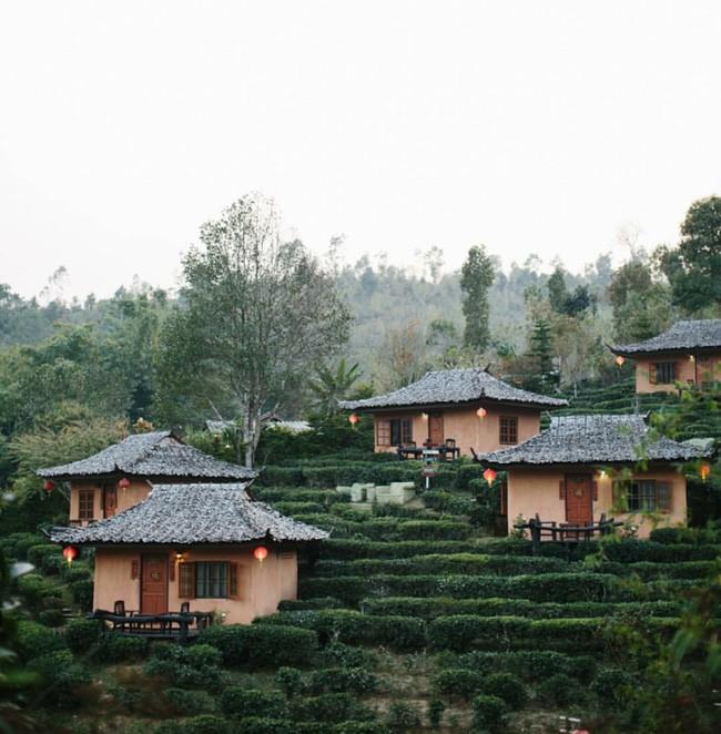 Đi Thái không chỉ có Bangkok hay biển, còn cả một miền Bắc xanh tươi rừng núi đang chờ bạn - Ảnh 19.