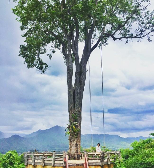 Đi Thái không chỉ có Bangkok hay biển, còn cả một miền Bắc xanh tươi rừng núi đang chờ bạn - Ảnh 26.