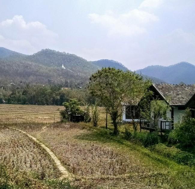 Đi Thái không chỉ có Bangkok hay biển, còn cả một miền Bắc xanh tươi rừng núi đang chờ bạn - Ảnh 33.