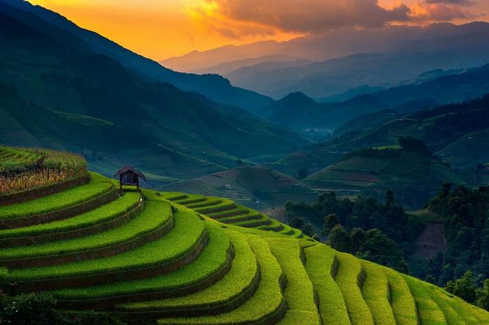 Khoảnh khắc hoàng hôn đẹp mê hồn với thửa ruộng bậc thang xanh xanh