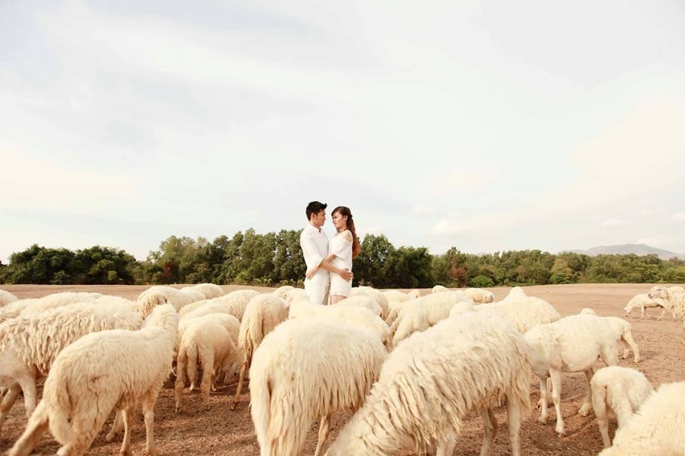 Tận hưởng những giây phút ngọt ngào bên nhau ở đồng cừu