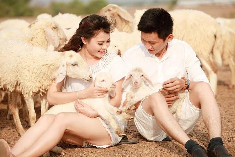 Check-in Suối Nghệ với những thước ảnh ảo diệu, đẹp lung linh cùng đàn cừu nhé