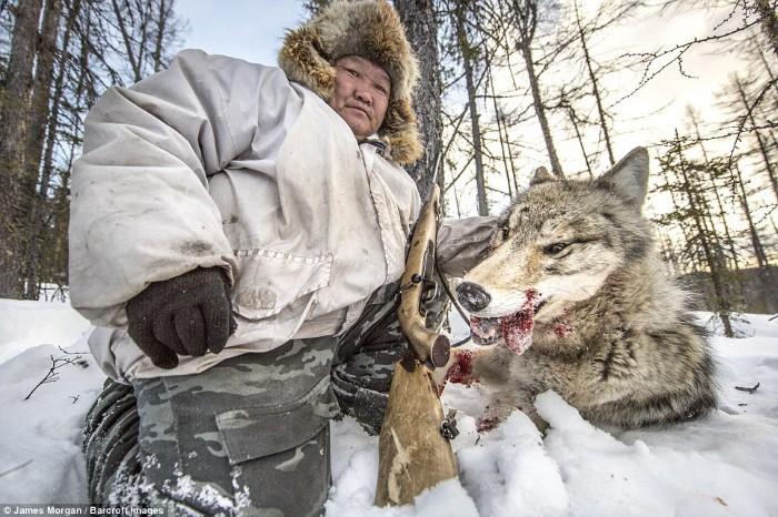 thợ săn Ion Maxsimovic bên một con chó sói đã bị bắn chết.