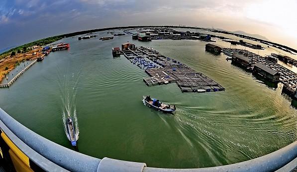 Chốn yên bình nơi đảo hàu Long Sơn