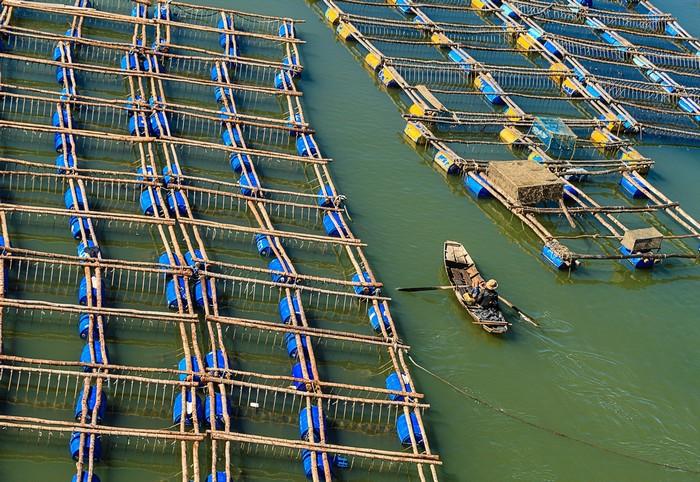 Mê cung rộng lớn giữa Long Sơn