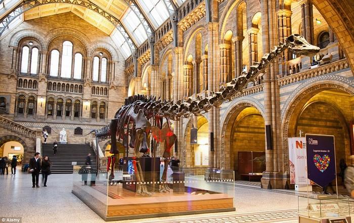 Bảo tàng Lịch sử tự nhiên, London, Anh