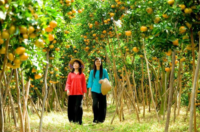Miền Tây cây trái ngọt lành