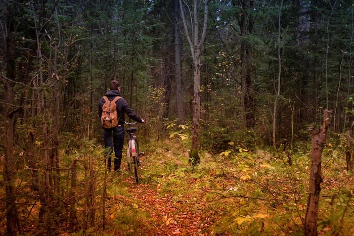 Bị lạc đường là một trong những nguy hiểm đối với các phượt thủ đi rừng