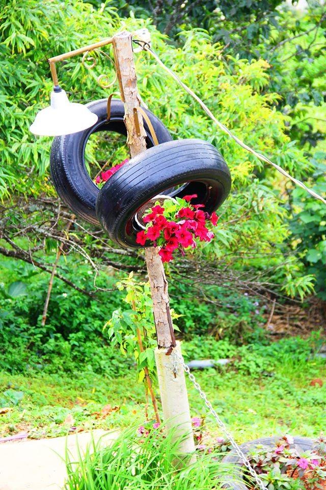 Cả cây cột điện cũng ngập sắc hoa