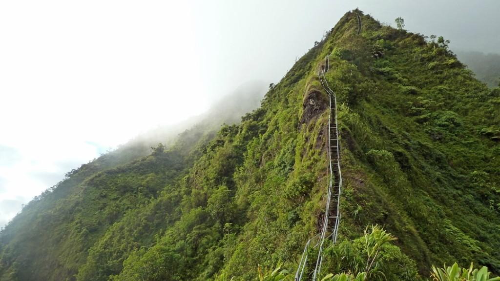 Thảm thực vật xanh tốt bao quanh đỉnh núi Haiku