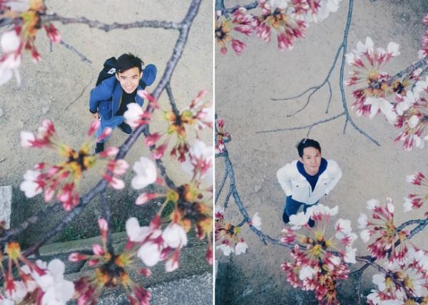 Những bông hoa chúm chím nở