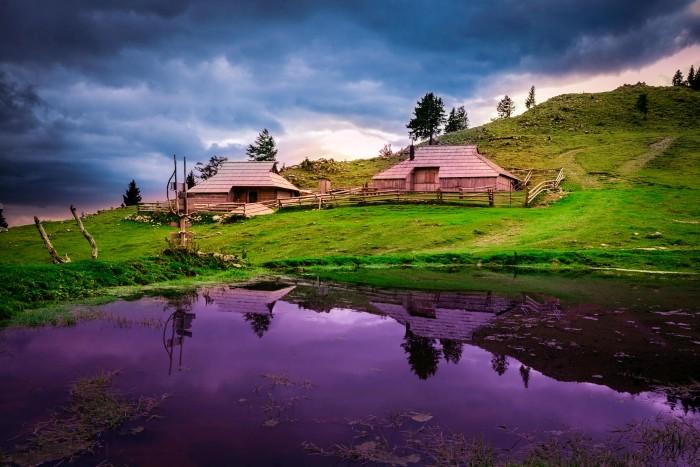 Say giấc mộng thơ cùng Slovenia