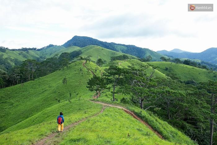 Trekking và cắm trại ở đồi Tà Năng: Đi để thấy mình còn trẻ và còn nhiều nơi phải chinh phục - Ảnh 1.