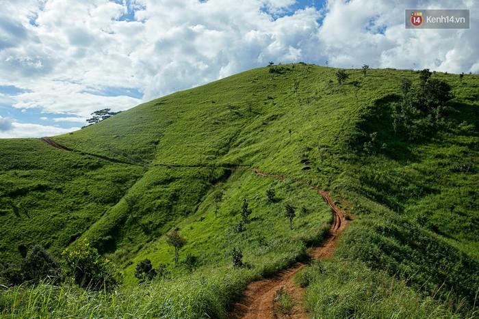 Trekking và cắm trại ở đồi Tà Năng: Đi để thấy mình còn trẻ và còn nhiều nơi phải chinh phục - Ảnh 2.