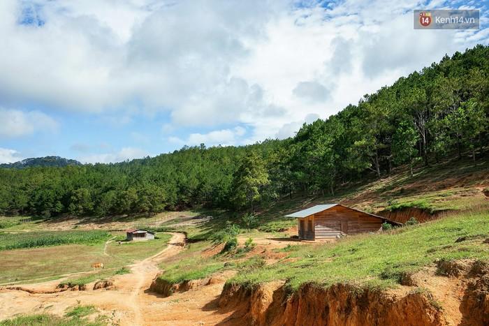 Trekking và cắm trại ở đồi Tà Năng: Đi để thấy mình còn trẻ và còn nhiều nơi phải chinh phục - Ảnh 4.