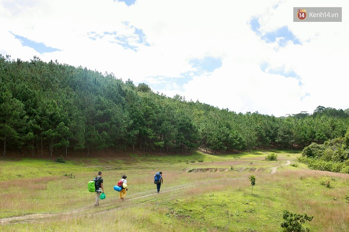 Trekking và cắm trại ở đồi Tà Năng: Đi để thấy mình còn trẻ và còn nhiều nơi phải chinh phục - Ảnh 7.
