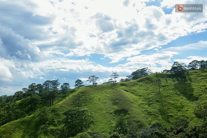 Trekking và cắm trại ở đồi Tà Năng: Đi để thấy mình còn trẻ và còn nhiều nơi phải chinh phục - Ảnh 8.
