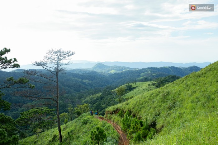 Trekking và cắm trại ở đồi Tà Năng: Đi để thấy mình còn trẻ và còn nhiều nơi phải chinh phục - Ảnh 16.