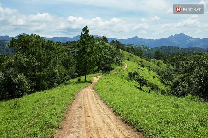 Trekking và cắm trại ở đồi Tà Năng: Đi để thấy mình còn trẻ và còn nhiều nơi phải chinh phục - Ảnh 17.