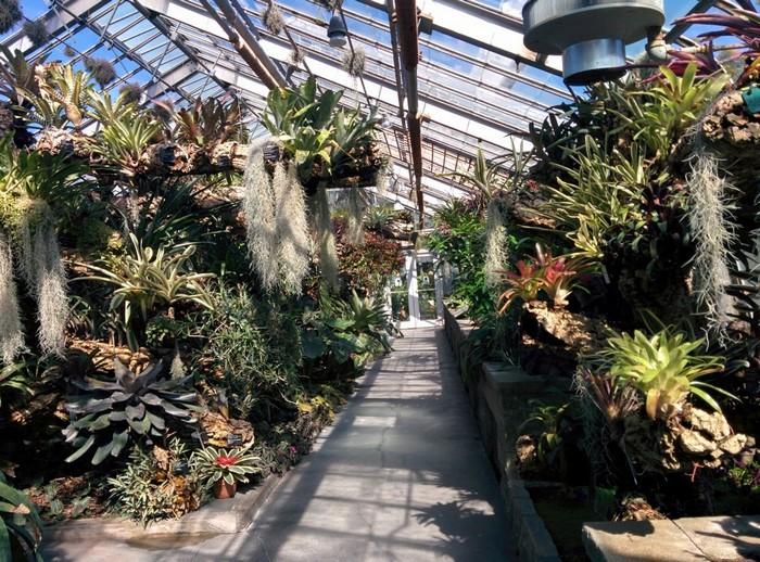 Khu nhà kính, nơi thực vật vẫn có thể sinh trưởng trong mùa đông