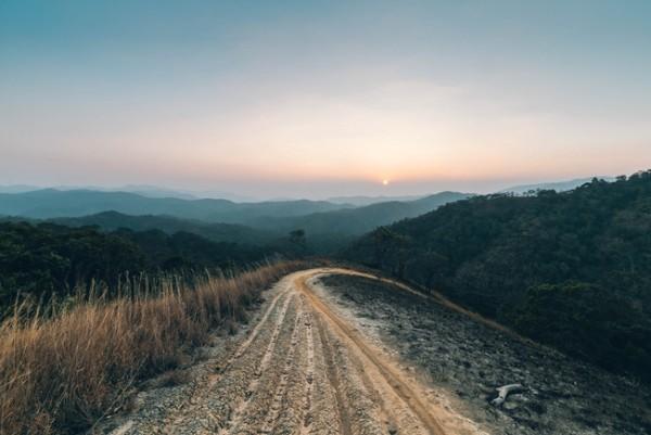 Con đường mòn