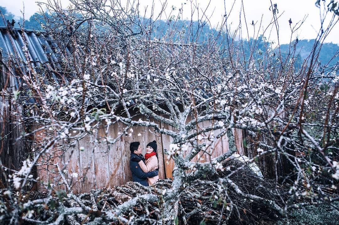 Giữa mùa hoa Mộc Châu- Ảnh: tinateehee