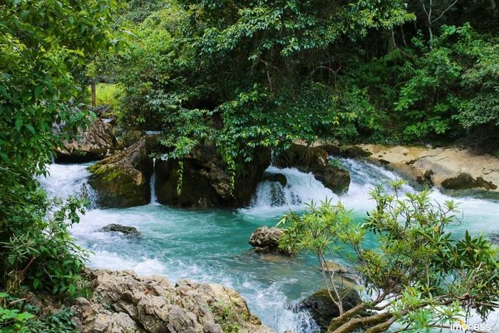 Mùa hè du lịch Pác Bó, bạn có dịp tận hưởng thiên nhiên trong lành ở khu di tích này