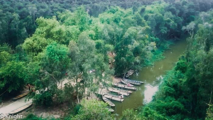 Say trong hương vị rừng xanh mát ở Gáo Giồng