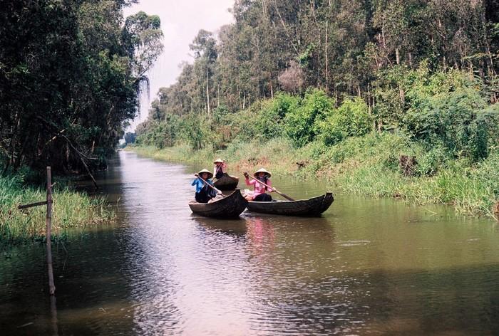 Lướt trên còn kênh nhỏ giữa rừng Gáo Giồng