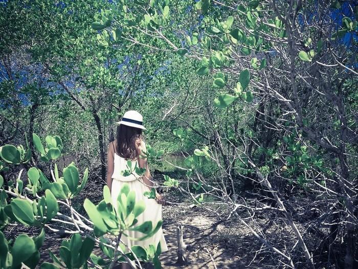 Lạc trong khu rừng ma mị