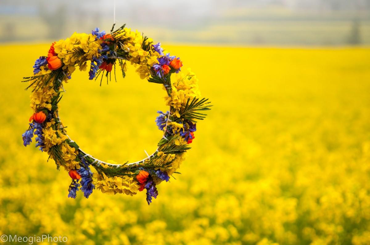 Vòng hoa xinh xắn hoa cải dầu