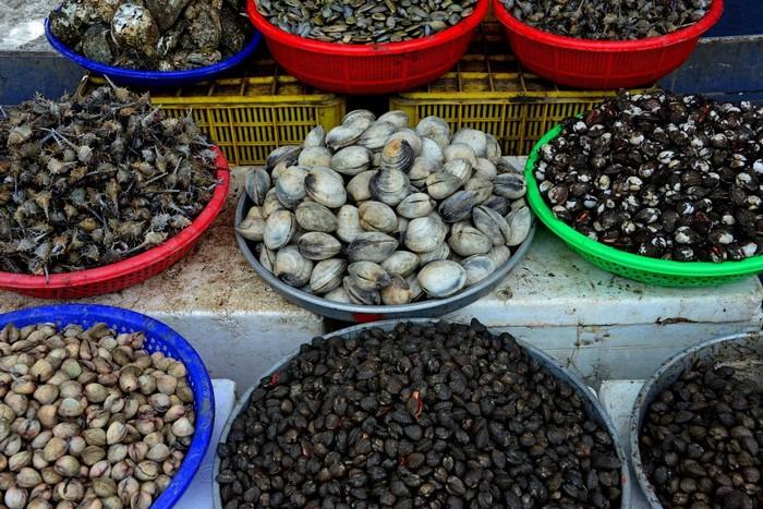 Hải sản – những sản vật từ biển không thể bở qua khi du lịch Đà Nẵng