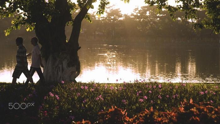 Công viên 29-3 – một chốn bình yên ngay giữa lòng thành phố