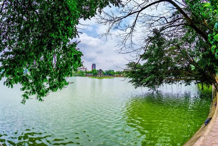 Bóng cây cổ thụ nghiêng nghiêng bên hồ Gươm