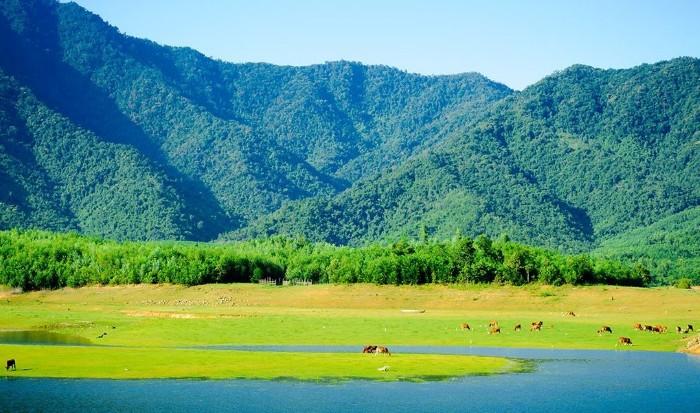 Có một thảo nguyên xanh như miền cổ tích ở hồ Hòa Trung - Ảnh: Sưu tầm