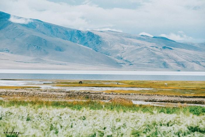Tsomoriri hiện ra trước mắt! Hồ trong xanh và thảm thực vật phong phú cho đến khi nó hoàn toàn đóng băng vào mùa đông, từ tháng 11 .