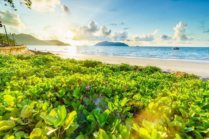 Biển Côn Đảo xanh trong đón chào du khách mùa hè