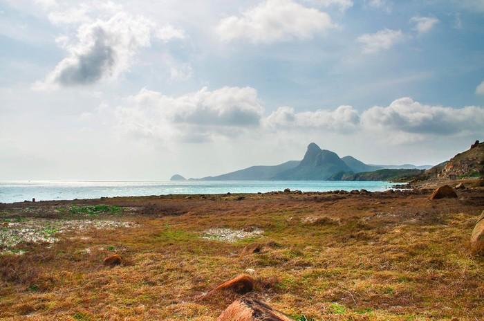 Bãi đất trống rộng ở mũi Cá Mập
