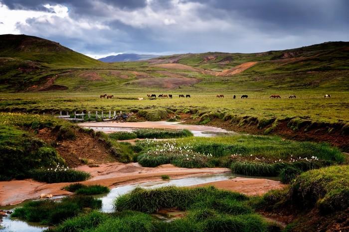 Đến Iceland ngỡ như đặt chân đến thảo nguyên tràn đầy sức sống