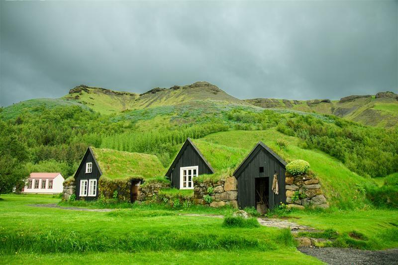Khu rừng cổ tích xanh mướt mắt ở Iceland