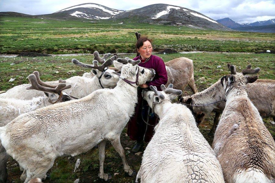 Những người Dukha (còn gọi là Tsaatans) sống trong các khu rừng sâu và rất xa xôi của Mông Cổ đã hàng nghìn năm nay.Lối sống của họ không bị thay đổi nhiều theo thời gian.
