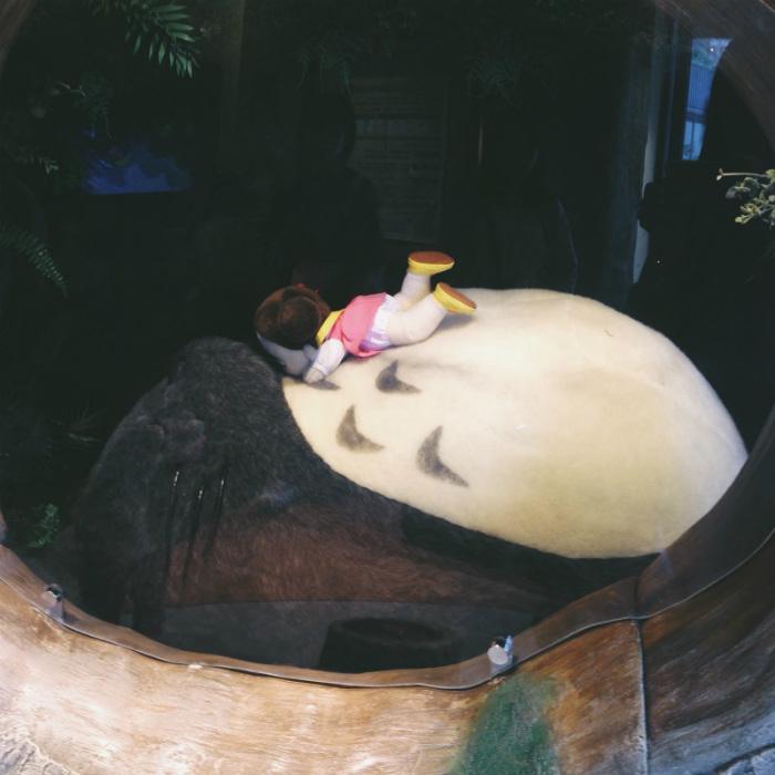 Totoro khổng lồ trong hốc cây