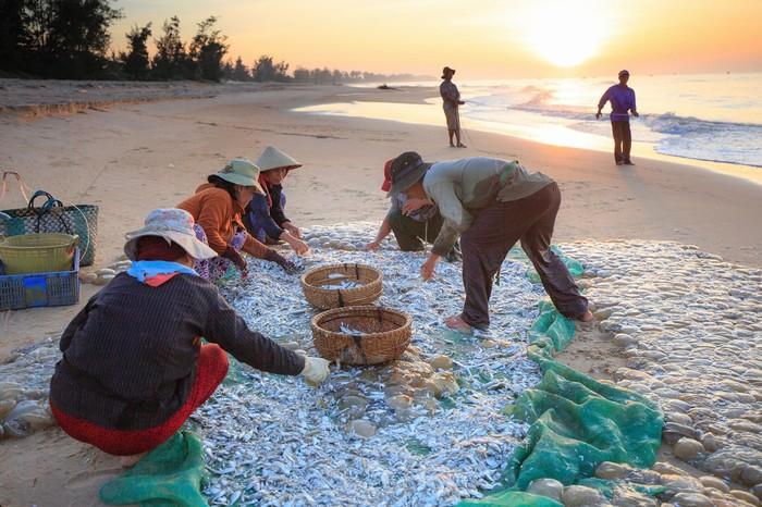 Họp chợ hải sản sau chuyến ra khơi bội thu