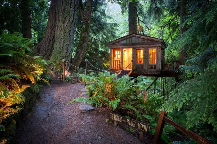 Sống như 'Cậu bé rừng xanh' trong ngôi nhà xinh giữa đại ngàn