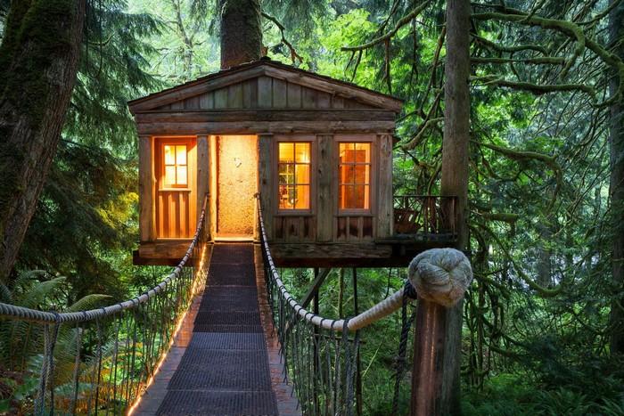 Ở nhà gỗ giữa rừng xanh vừa an toàn