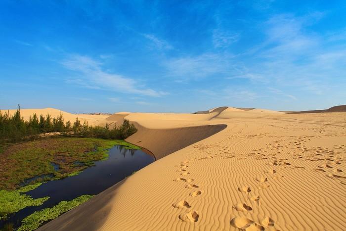 Chinh phục đồi cát trắng tại Phan Thiết
