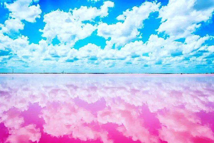 Cùng làn nước hồng và bầu trời xanh