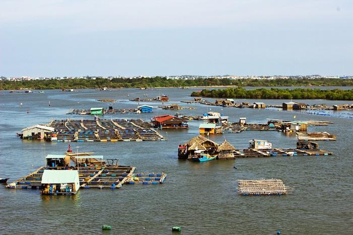 Ghé làng bè Long Sơn đổi gió hè ngày cuối tuần