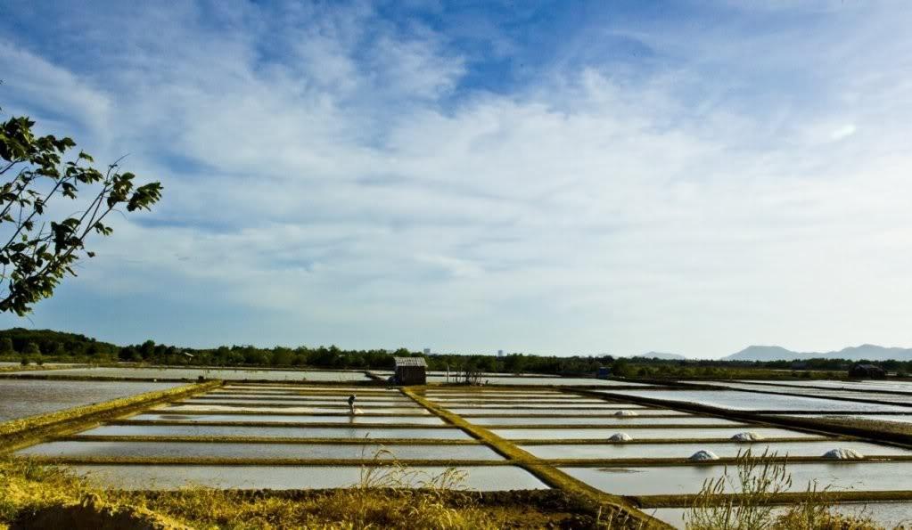 Thăm ruộng muối trắng tinh trong nắng