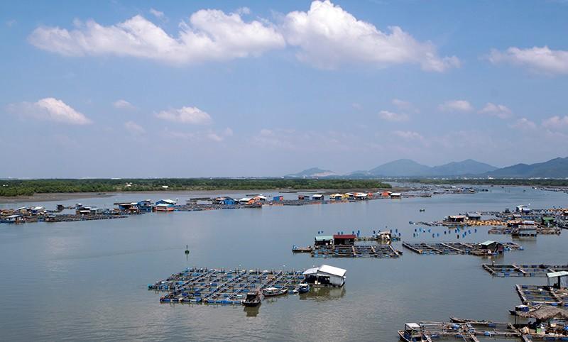 Thăm bè hải sản và thưởng thức món ngon đặc trưng ở Long Sơn